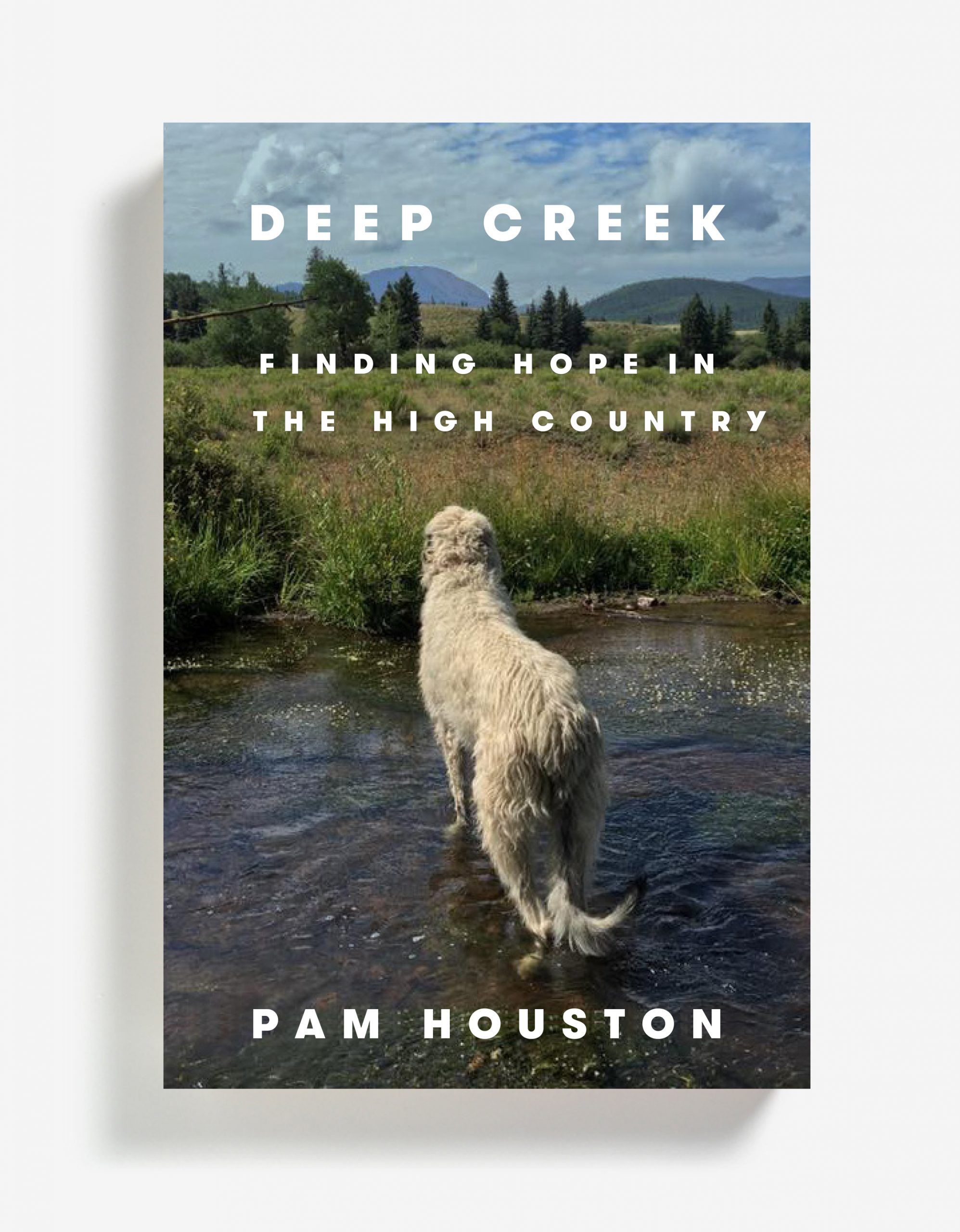 Deep Creek: Finding Hope in the High Country (Paperback)